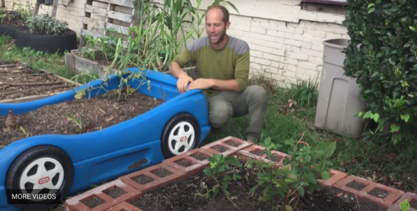 Getting Started with Urban or Small Town Gardening